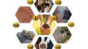 Terugwinnen micronutriënten uit afval en afvalwater: moeilijke maar essentiële stap in de circulaire economie - Berend Reitsma