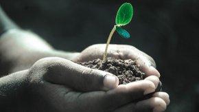 Uitgezocht: Cofinanciering bodemsanering in Vlaanderen